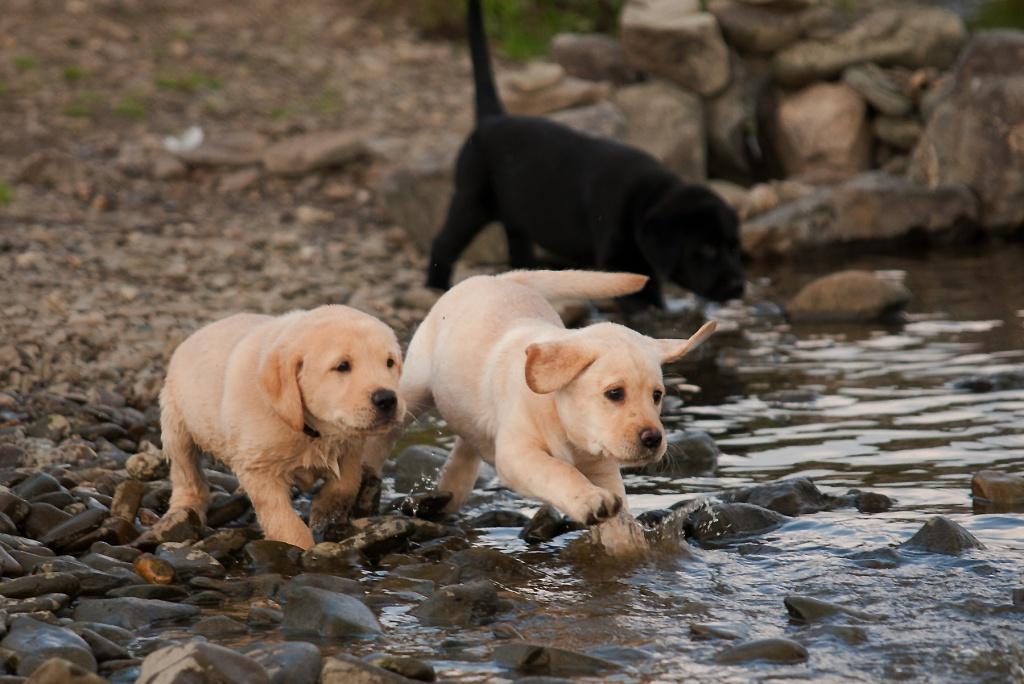 Wasserspaß!