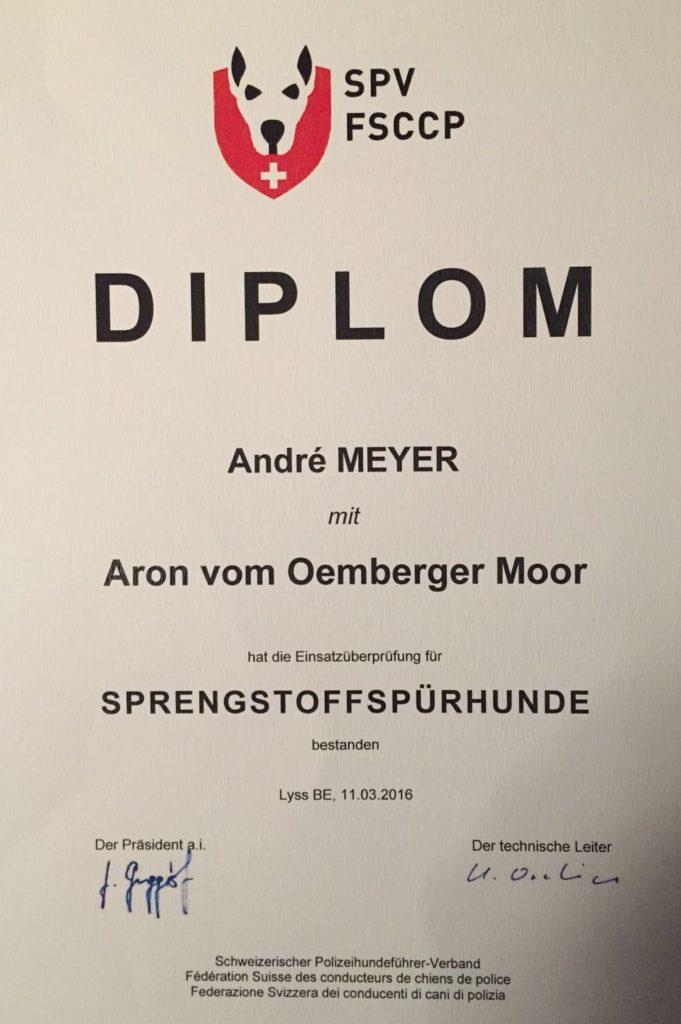 Aron Diplom